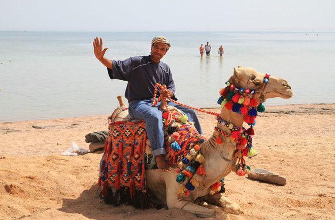 Любопытные традиции египтян