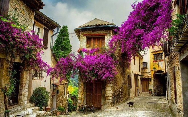 Small Town In Provence, France