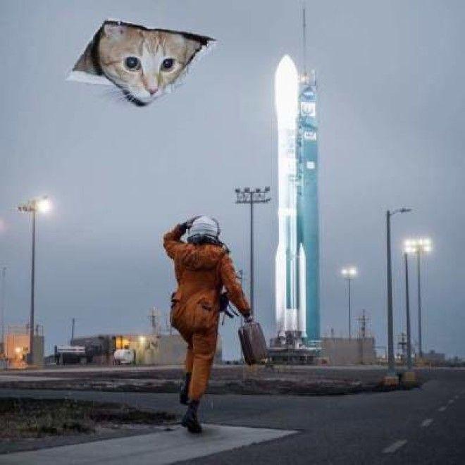 Веселые мемы от гениев фотошопа