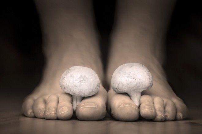 дегтярное мыло инструкция